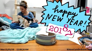 Скачать New Years Eve In The Kitten Cuddle Room Foster Mom Sarah Wears Her Tiara