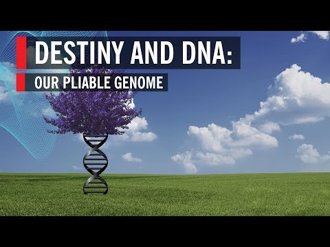 Destiny and DNA: Our Pliable Genome
