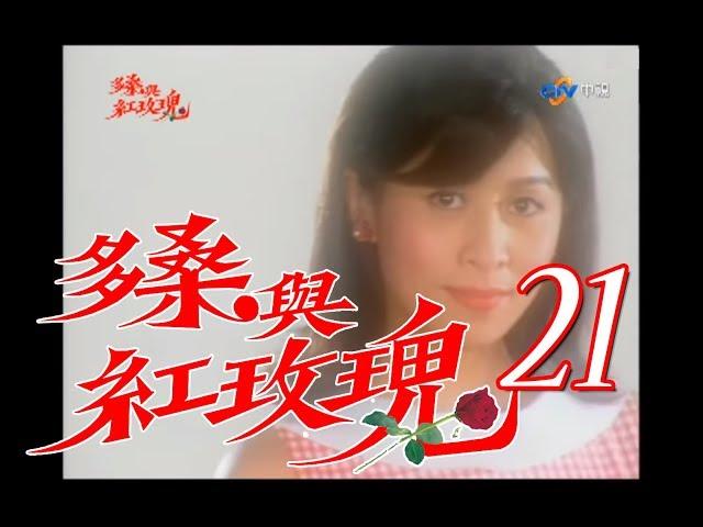 『多桑與紅玫瑰』第21集(劉嘉玲 王識賢 藍正龍 陳冠霖 黃仲崑 馬如風)_2001年