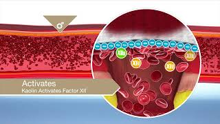 How QuikClot's Kaolin Technology Works Watch This...
