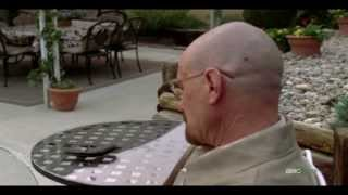 spoilers breaking bad walter white vs gustavo fring