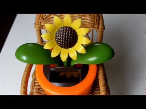 Solar Sunflower From The Dollar Tree. Cool Toy!