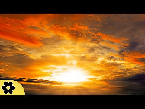 Music for Sleeping, Soothing Music, Stress Relief, Go to Sleep, Background Music, 8 Hours, ✿3163C