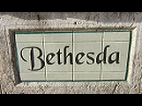 Jan 1, 2017 - This Will Always Be Bethesda