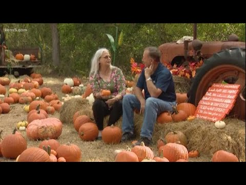 Texas Outdoors: Owl Creek Pumpkin Patch