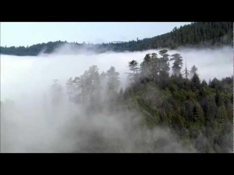 Asura - Lost Eden [HD]