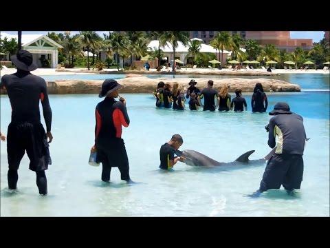 Dolphin Bay Atlantis Dubai einfach nur abartig