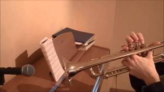 Yiruma - Kiss The Rain (trumpet cover)