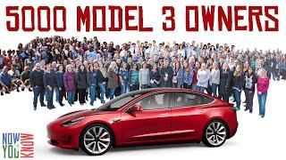 Bloomberg's Model 3 Survey | In Depth