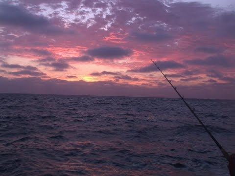 Excel SportFishing 8 Day Trip