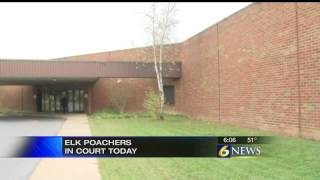 Clearfield County elk poachers have day in cou