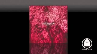Fort Romeau - Insides (Roman Flügel Remix)