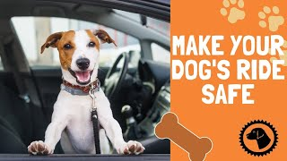 Making Your Dogs Car Ride Safe & Comfortable | DOG BLOG 🐶 Brooklyn's Corner