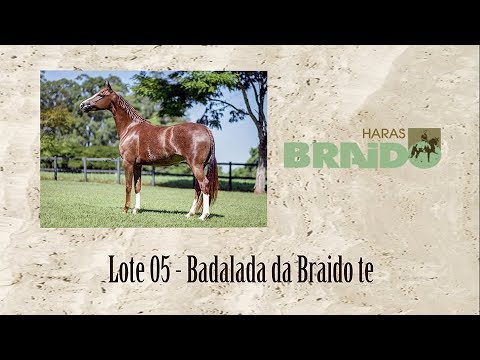 Badalada da Braido