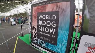 D´Aruzel Shih-Tzu at World Dog Show 2018 Amsterdam