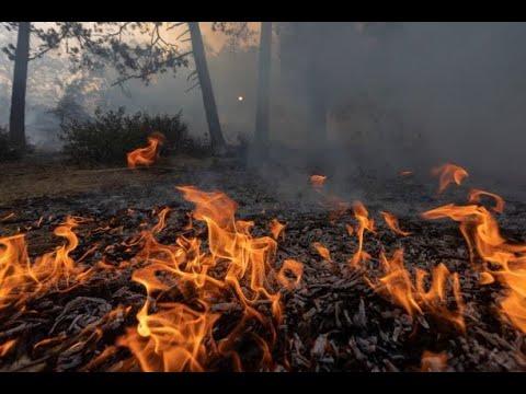 حريق ضخم يضرب جنوب كاليفورنيا و يجبر 8000 شخص على إجلاء منازلهم  - نشر قبل 11 ساعة