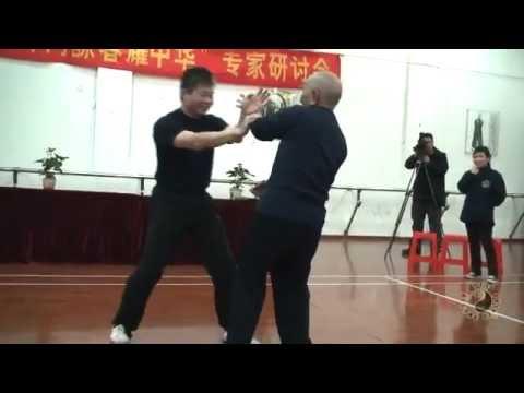 Master Michael Tse & Grandmaster Ip Chun Chi Sau