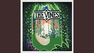 Provided to YouTube by Universal Music Group Mary Jane · The Vines ...