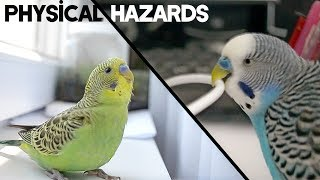 How to take Care | Physical Hazards Around the Home