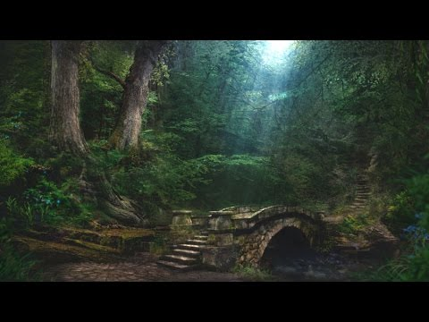 Forest Creek Sounds | 3 Hours | Sleep, Relax, Focus or Meditation