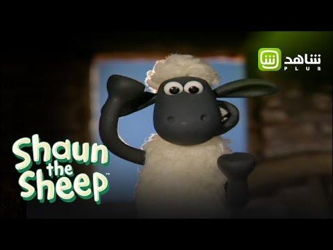 من لا يحب الخروف شون والكلب بيتزر Shaun The Sheep متوفر على شاهد بلس Youtube