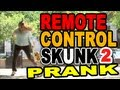 Remote Control Skunk two! by Tom Mabe