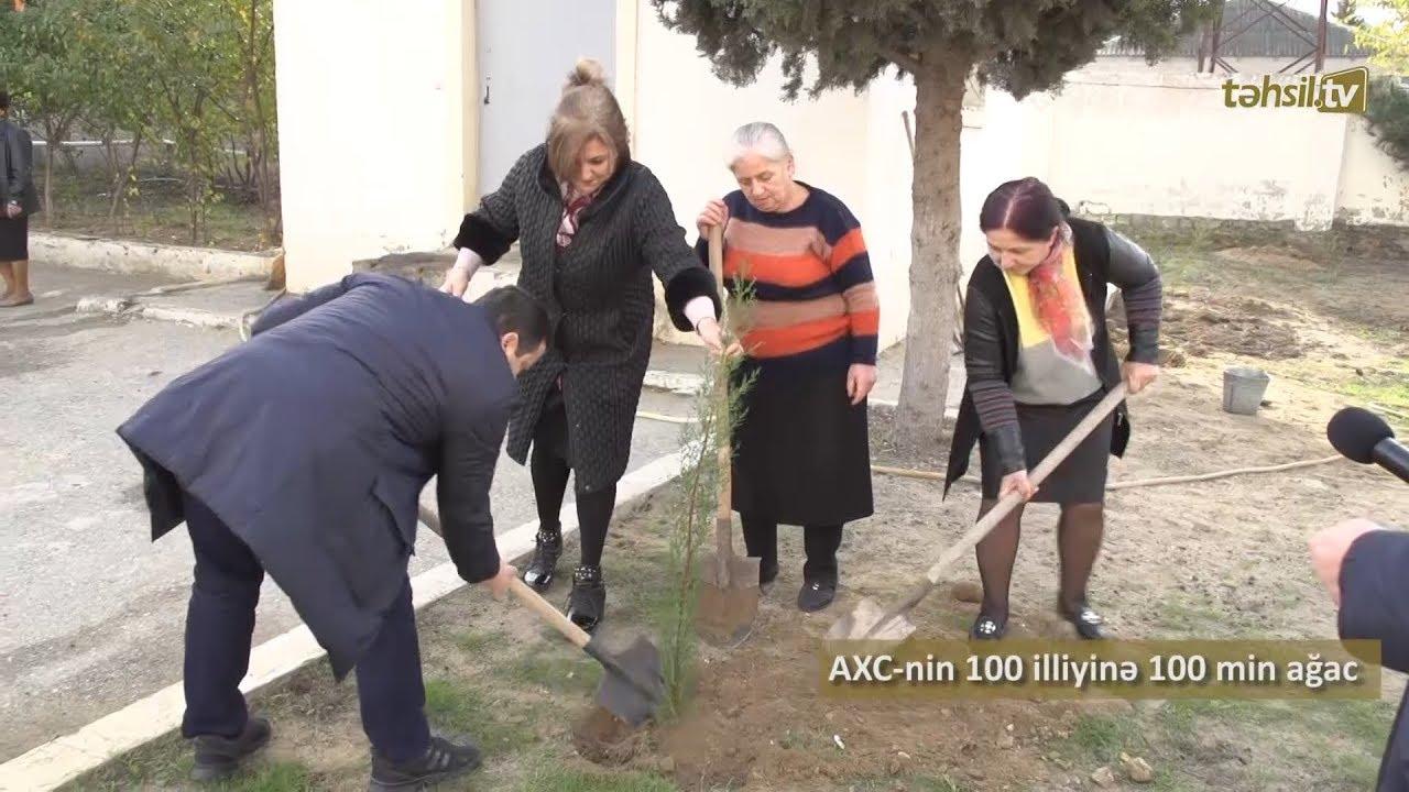 Təhsil TV: AXC-nin 100 illiyinə 100 min ağac