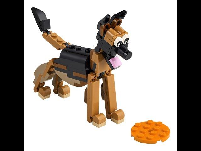 Aufbau von LEGO® Creator 3in1 30578 (in Schweizerdeutsch)