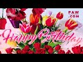 Happy Birthday Postcard Just For You mp3