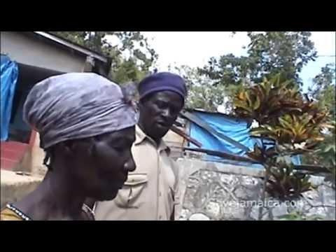 Jamaican Herbal Remedies - Please Share - savejamaica.com - Rondie Pottinger