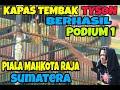 Kapas Tembak Tyson Brasil Podium di Piala Mahkota Raja Sumatera  Mp3 - Mp4 Download