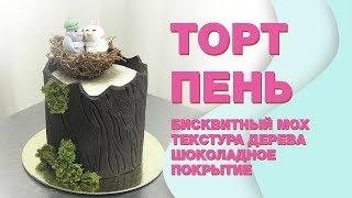 Торт - ПЕНЬ ☆ Бисквитный МОХ☆  Кора из Шоколада   ☆ Молекулярный бисквит