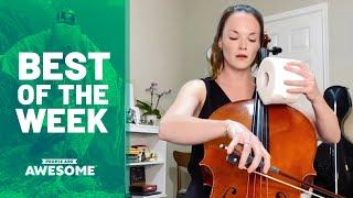 Toilet Paper Tricks & More | Best of the Week