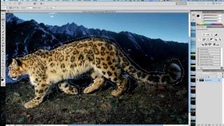 Photoshop CS5 Content Aware Tips & Tricks For Perfection - Adobe