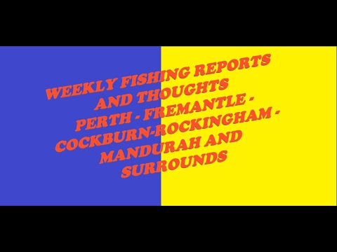 Fishing Thoughts And Reports - Weekly Advice Mandurah, Rockingham, Perth, Cockburn - 24-06-20