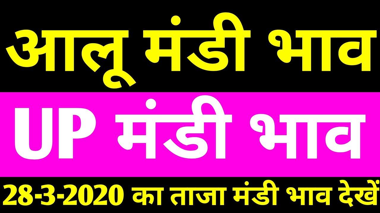 आलू मंडी भाव|aalu mandi bhav|potato mandi rates|up mandi bhav|यूपी मंडी भाव|aalu ka bhav|28-3-2020|