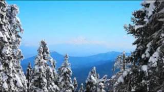 Baixar ROYAL PHILHARMONIC ORCHESTRA - LARA'S THEME (DR. ZHIVAGO)