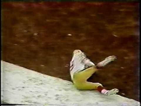 1984 USFL Philadelphia Stars at Memphis Showboats
