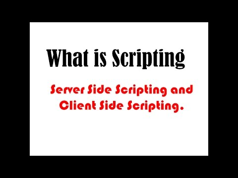 CH 02 : Basic of Scripting : Server Side Scripting and Client Side Scripting [Hindi]