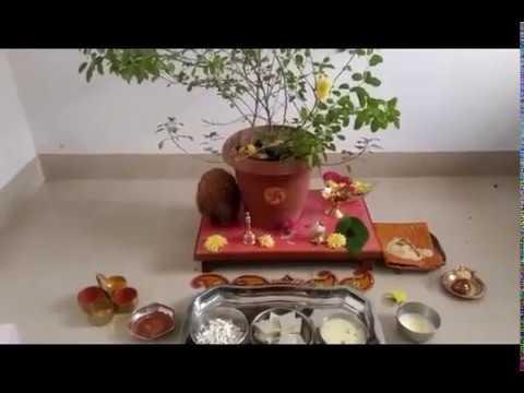 How To Do Tulsi Saligram Vivah Puja At Home, Tulsi Puja Vidhi | तुलसी विवाह पूजन विधि