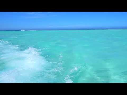 マリンジェットで百合ヶ浜から帰る時の光景