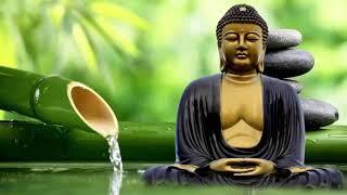 Nhạc Thiền Nghe Nhẹ Lòng, Dễ Ngủ...Nhạc Thiền Mới Nhất