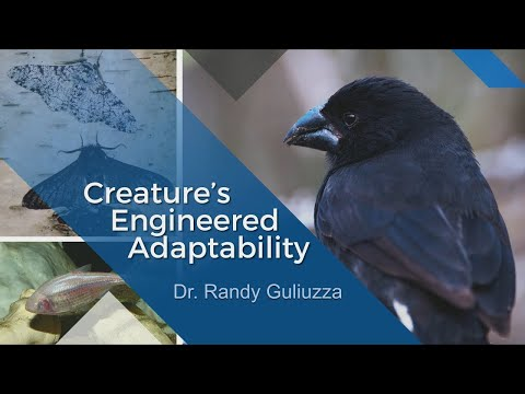 Origins: Creature's Engineered Adaptability