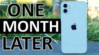 iPhone 12 (Biggest Problems & Best Features After Daily Use for One Month)