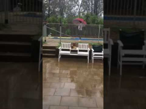 strong winds push girl into the swimming pool