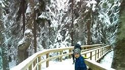 Suomen pisimmät portaat