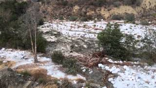 Wall Of Water! Incredible flash flood in Forest Falls today. PT. 2