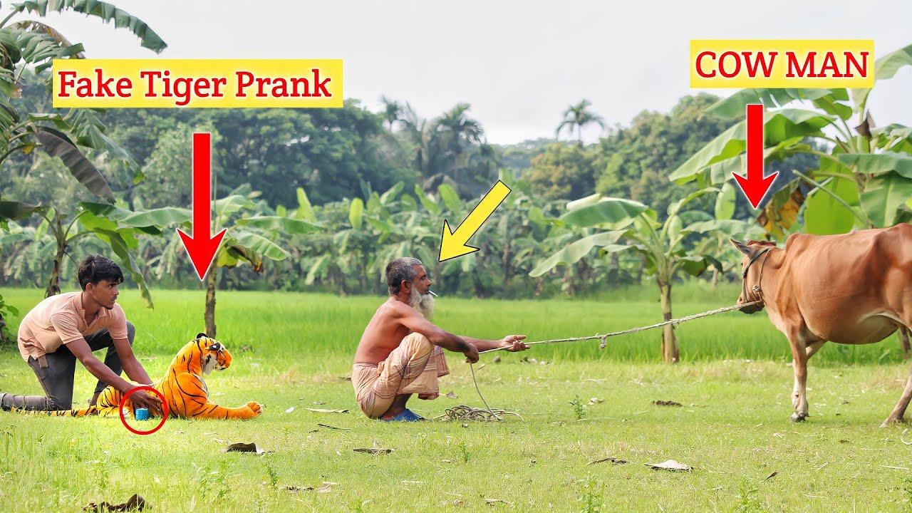 Fake Tiger vs COW MAN PRANK | Fake Tiger vs Man Prank Video (Part 5) ComicaL TV