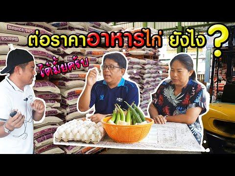 ร้านอาหารสัตว์ มีกำไร 1.6 บาท ในวันแรก จนมีวันนี้ (ร้าน ช.พิษณุโลก ปศุศัตว์) - โต๋ Pakdong Channel