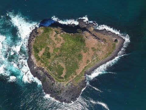 Manila Drone on Tour: Fingal Head and Cook Island Aquatic Reserve flyover